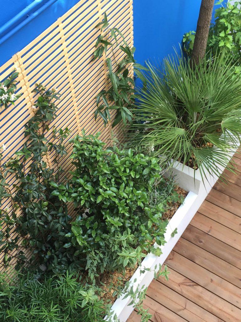 Très plantée, la jardinière au fond du patio prend des allures de jungle.